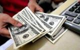 Dollar yenə bahalaşdı